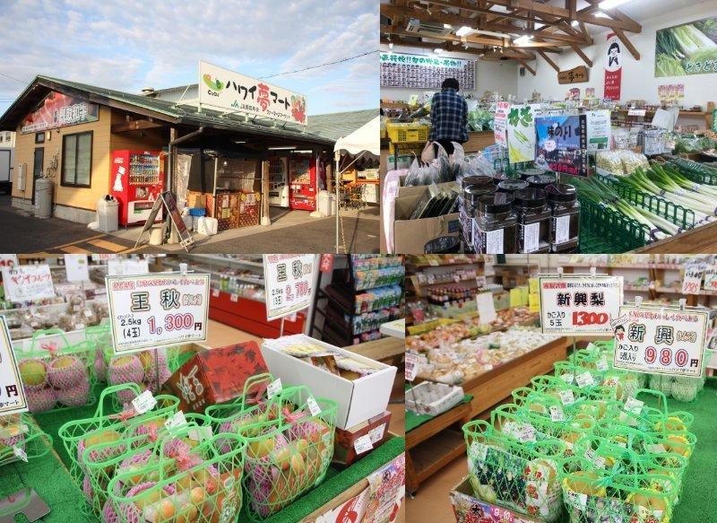 JA鳥取中央農産物直売所「ハワイ夢マート」には地元でとれた食材が