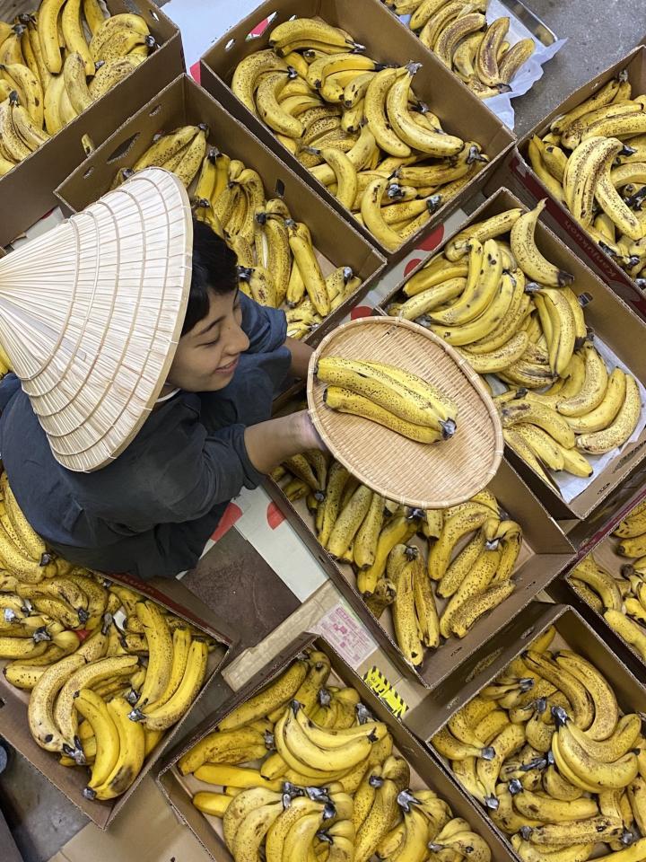 店内でバナナを熟成中(画像はNEWSTAND WOW提供)