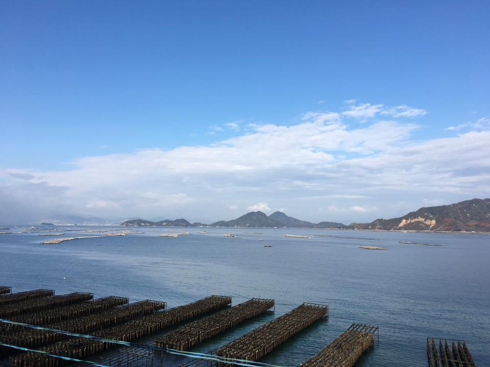 広島湾に並ぶ牡蠣筏