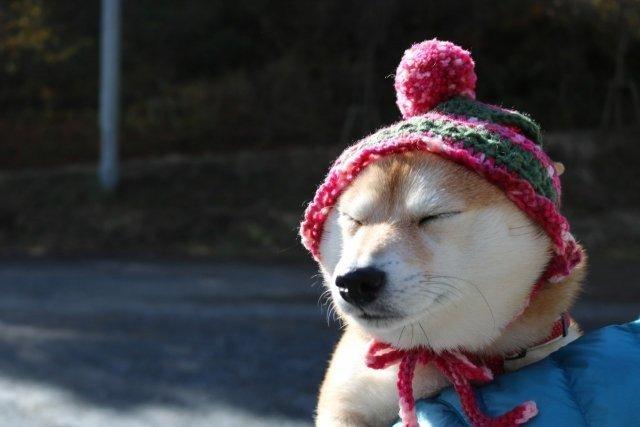 防寒はしっかり!(画像はイメージ)