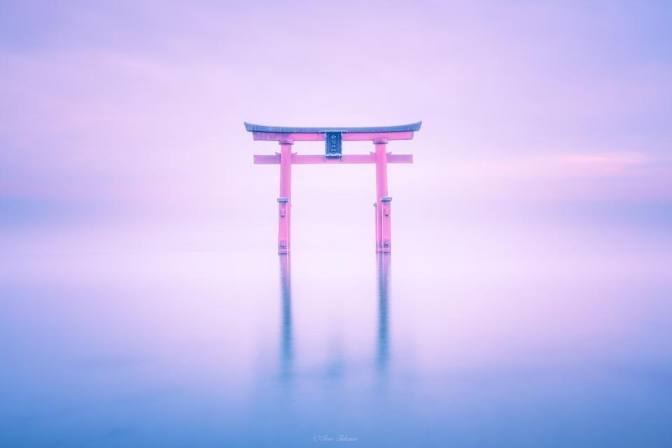 「神秘的」の一言に尽きる(以下、画像はIori Takano(@_iori_xx21)さんのツイートより)