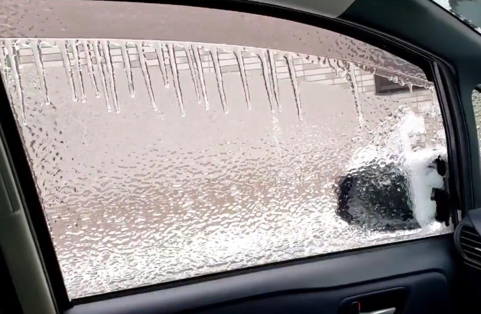 氷のコーティングだ(画像は舛田那由他さんのツイートより)