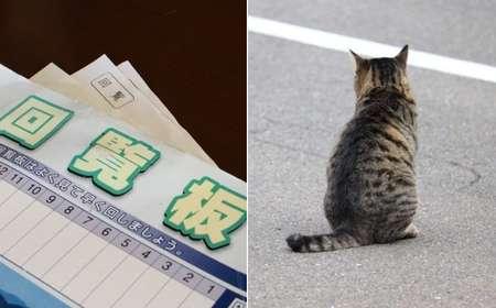 回覧板に「野良猫問題について」(画像はイメージ)