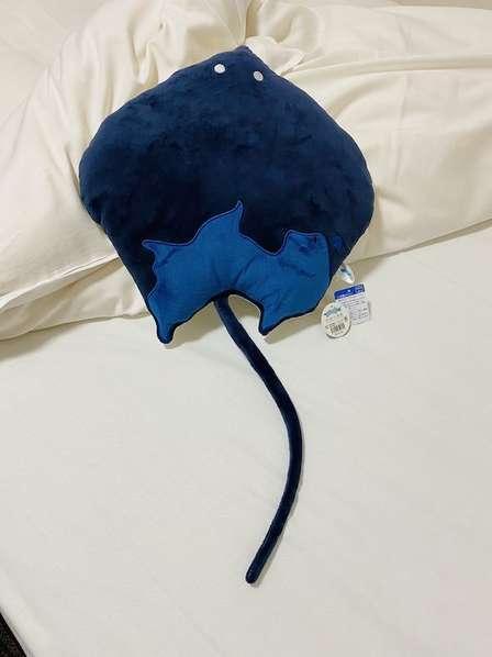 「こんな可愛い子を座布団になんかできるかよー!」 四国水族館・エイくん座布団の人気沸騰中