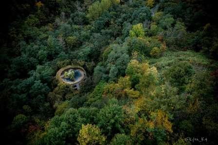 まるで「森に浮かぶラピュタ」 木々の中に飲み込まれていく廃校が美しく切ない