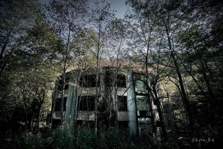 2013年に撮影したもの。最初から森とともに在ったかのよう