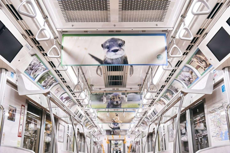 ユーウツな通勤電車がパラダイスに...!(画像はプレスリリースより)