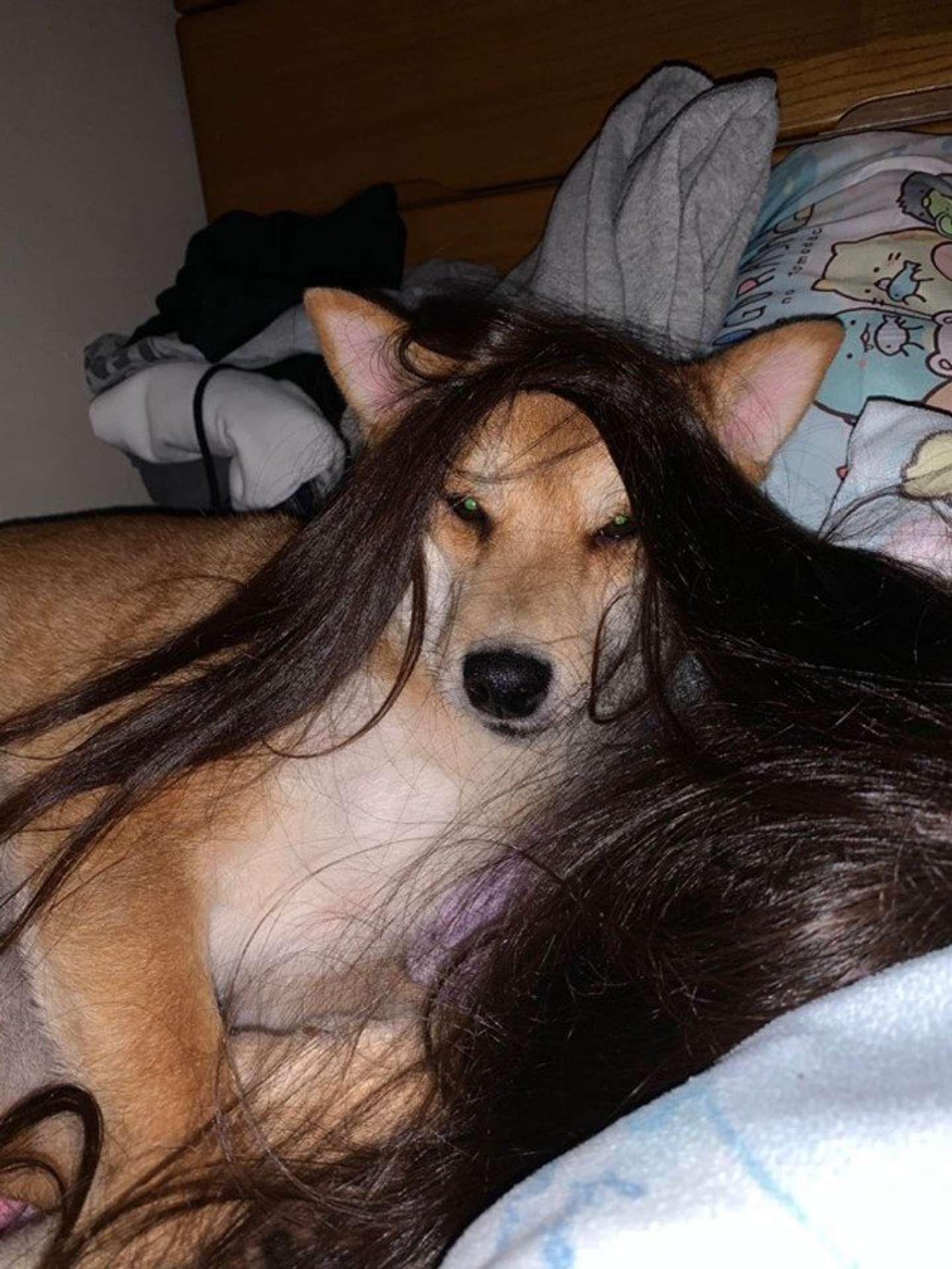 さらさらヘアが素敵(画像はmaiko @mai0530koさん提供)