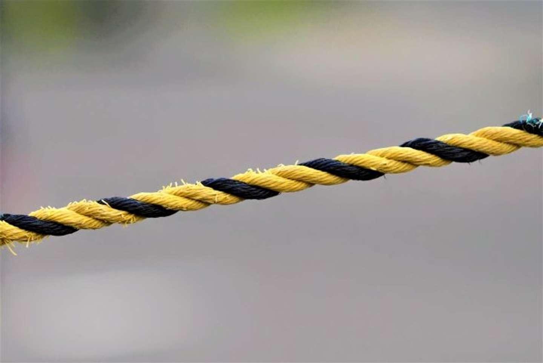トラロープ(画像はイメージ)