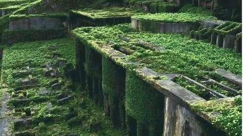 「ラピュタ」はここにあったのか! 佐渡島にある「北沢浮遊選鉱場跡」の雰囲気が最高すぎる