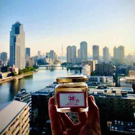 都会のど真ん中に「ニホンミツバチ」6万匹超 外敵少なく、のびのび美味しい蜜集め