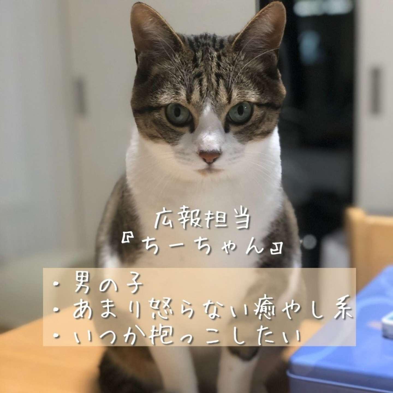 広報担当のちーちゃん(画像は佐々木酒造 公式ツイッターより)
