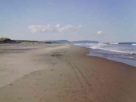 鳥取砂丘は「日本で2番目に大きい砂丘」ってホント? 県に聞くと...「そうとも言い切れない」