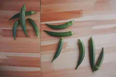 オクラを並べただけなのに... 野菜農園のツイートに16万いいねの大反響→公式も「ようこそ、ホテルokuraへ」