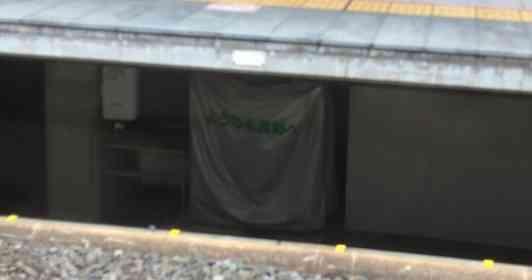まさか隠しダンジョンの入り口...? 「地底大国長野」に繋がってそうな場所が、駅のホームの下にあった