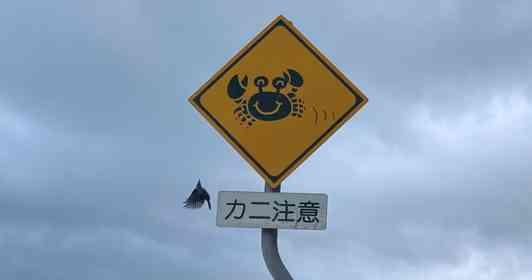 沖縄で発見された「カニ注意」標識に反響 設置機関に理由を聞くと→「よくカニさんが轢かれてしまうので...」