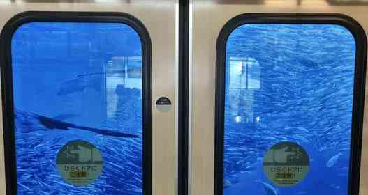 ドアの向こうは海の中? 小田急線の車窓からの絶景に反響「なにこれ凄い」「ファンタジーの世界だ」