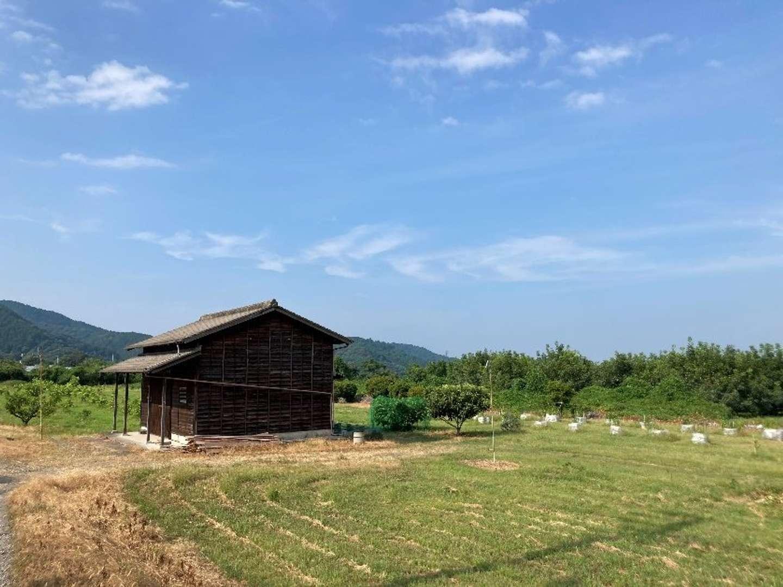 井藤さんが借りている畑と機材が収納されている小屋。