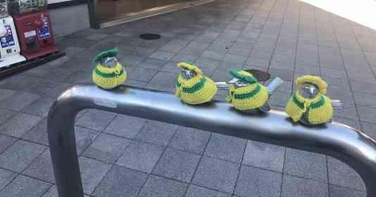 月に一度「お着がえ」する、江ノ島駅前のオシャレな小鳥たち いったい誰が?何のために?真相を追う