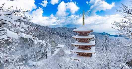 まだ誰も知らない「京都の魅力」を映し出す 気鋭の写真家が「地元」にこだわり続ける理由