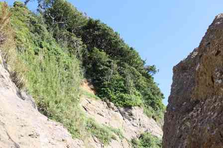 「山道を走行中、ハンドルが固まって崖に一直線。車から出られないのに、誰も見つけてくれなくて...」(千葉県・30代女性)