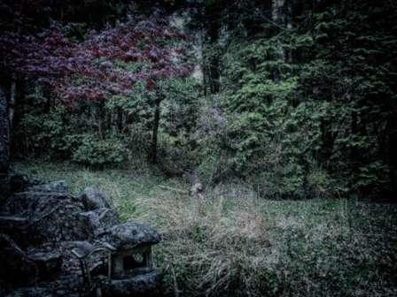 「『東京では普通だった。これだから田舎は...』都会の女アピールが激しい隣の奥さん。でも、あなたの本当の出身地は...」(山形県・40代女性)