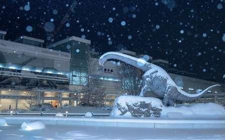 氷河期が到来してる...? 寒波に襲われた福井駅があまりにも「デイ・アフター・トゥモロー」だった